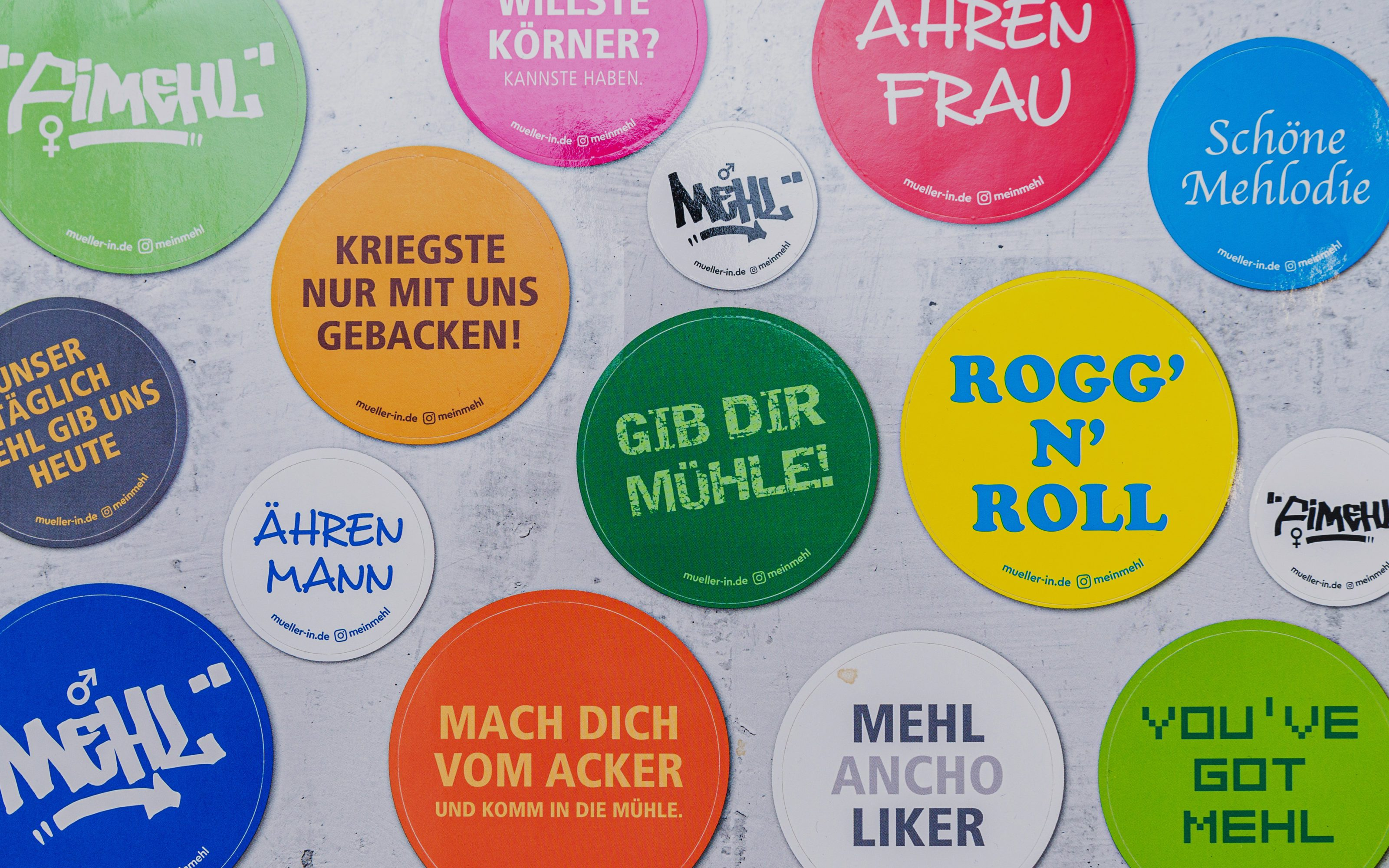 GRACO-VGMS-Social-Media-Kampagne-Projekt